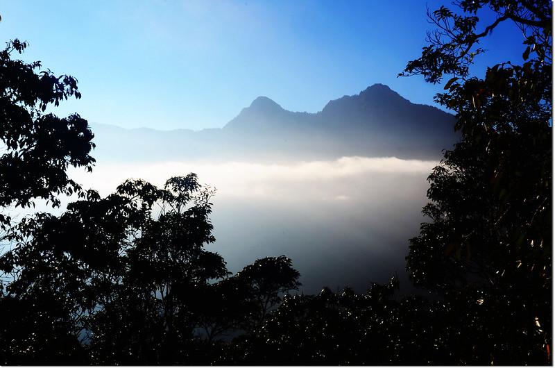 焦土山登山途中東南眺佐久間山、立霧主山