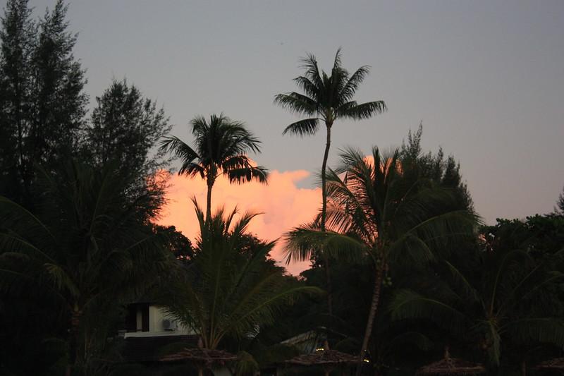 Нгапали, Мьянма