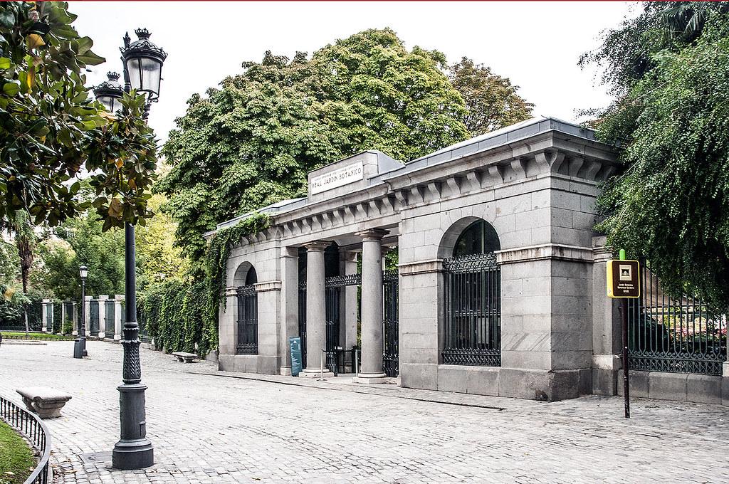 Real jard n bot nico de madrid puerta de murillo la for Cementerio parque jardin la puerta