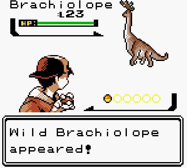 Brachiolope Gallery