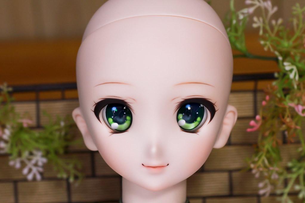 DDH-06(N)Sc-g-head-1