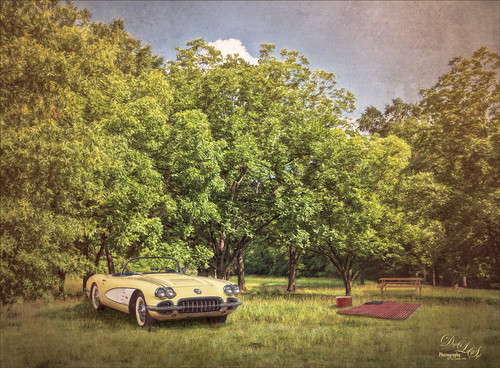 Composited image of a picnic with a yellow corvette