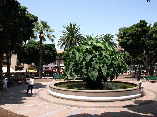 Plaza Charco, Puerto de la Cruz