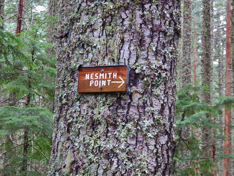 Trail sign for Nesmith Point
