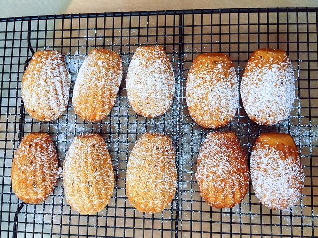 Brown Butter Pumpkin Madeleines