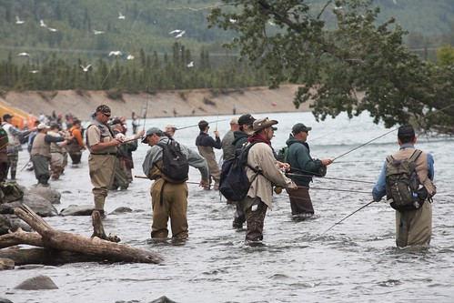 Fishermen on a backwater channel of the Kenai River