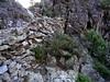Le vieux chemin et ses soutènements dans la descente vers l'Ancinu
