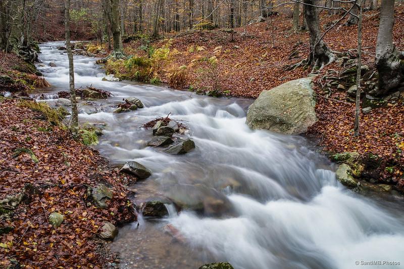Riera de Passavets con agua abundante en otoño