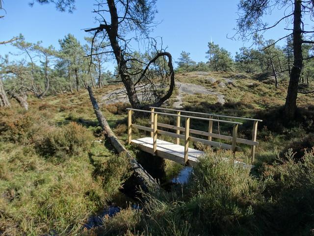 Puente en la Ruta Pena Montol - Fragavella