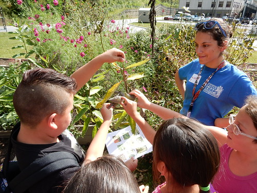 Cherokee Central Schools students participating in a hands-on lesson in the school's garden