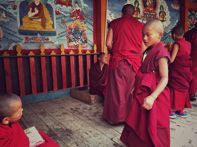 Niños monjes (budistas) en el gran monasterio de Songzanlin de Shangri-La (Yunnan, China)