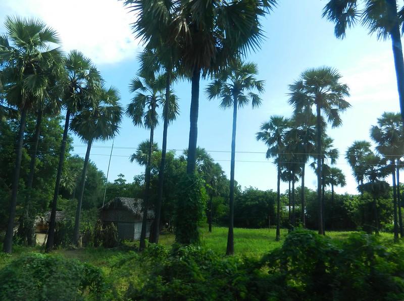 Села Мьянмы красивы