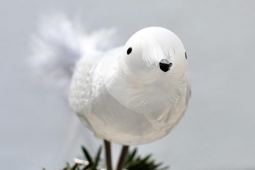 Weihnachten Weihnachtsbaum Dekoration Schmuck Weihnachtsschmuck Glas Vogel Glasvögelchen zart zerbrechlich filigran Foto Brigitte Stolle 2015