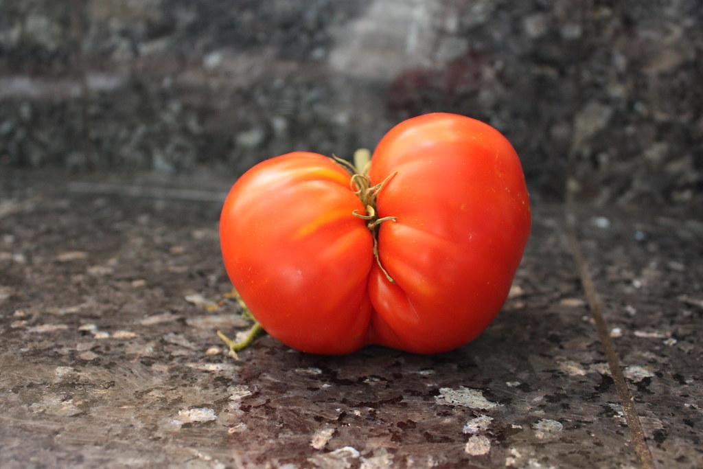 如果水果的圓尖美醜確實不會影響到美味和食用安全,人們對水果的認知有可能不再從視覺、規格定義嗎?圖片來源:Prizmatic(CC BY-NC 2.0)