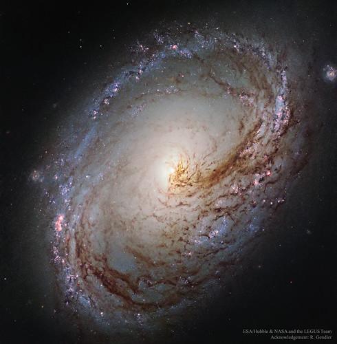 VCSE - Mai Kép - Messier 96