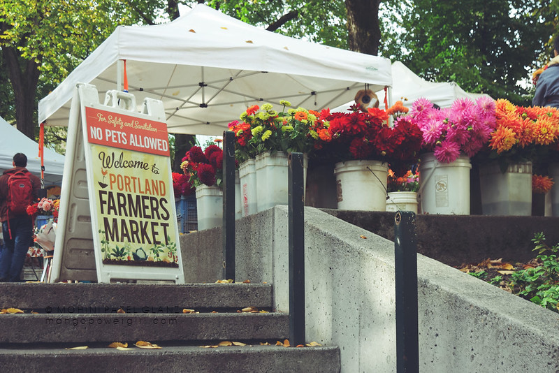 welcome to portland farmers market