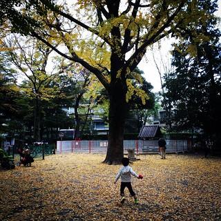 有栖川宮記念公園 2015.11.23
