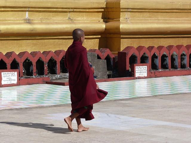 Monje budista en una pagoda de Myanmar