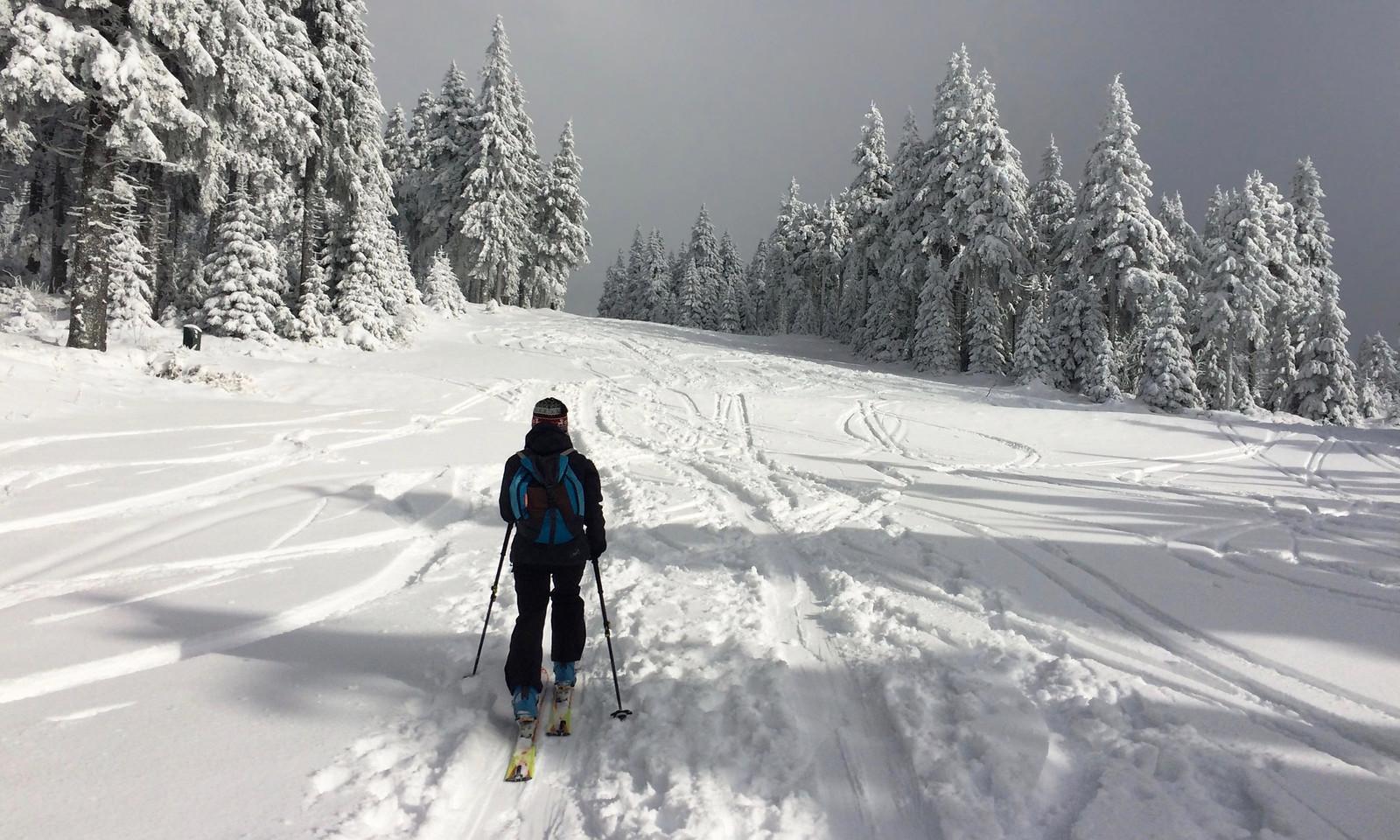 Přírodního sněhu je dostatek