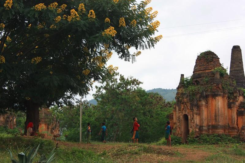 Индейн Мьянма