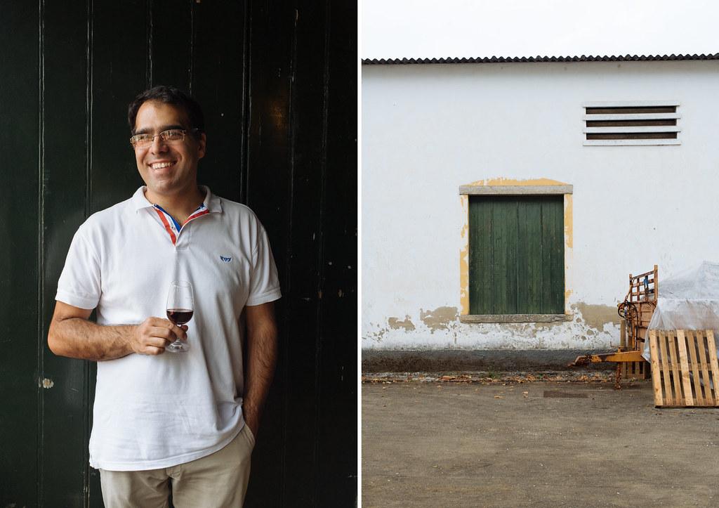 Francisco Figueiredo, Adega regional de Colares