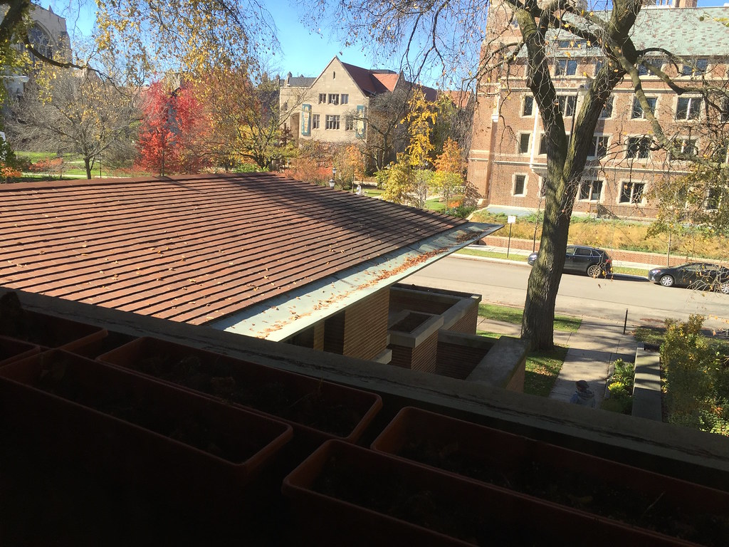 Robie House Living Room Roof The Sleek Profile And