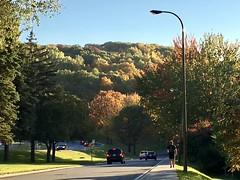 Colours on the mountain VII