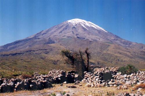 Arbolitos (2001/06)