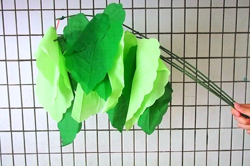 props for Sunday School lesson on Mark 11: crepe fig tree leaves