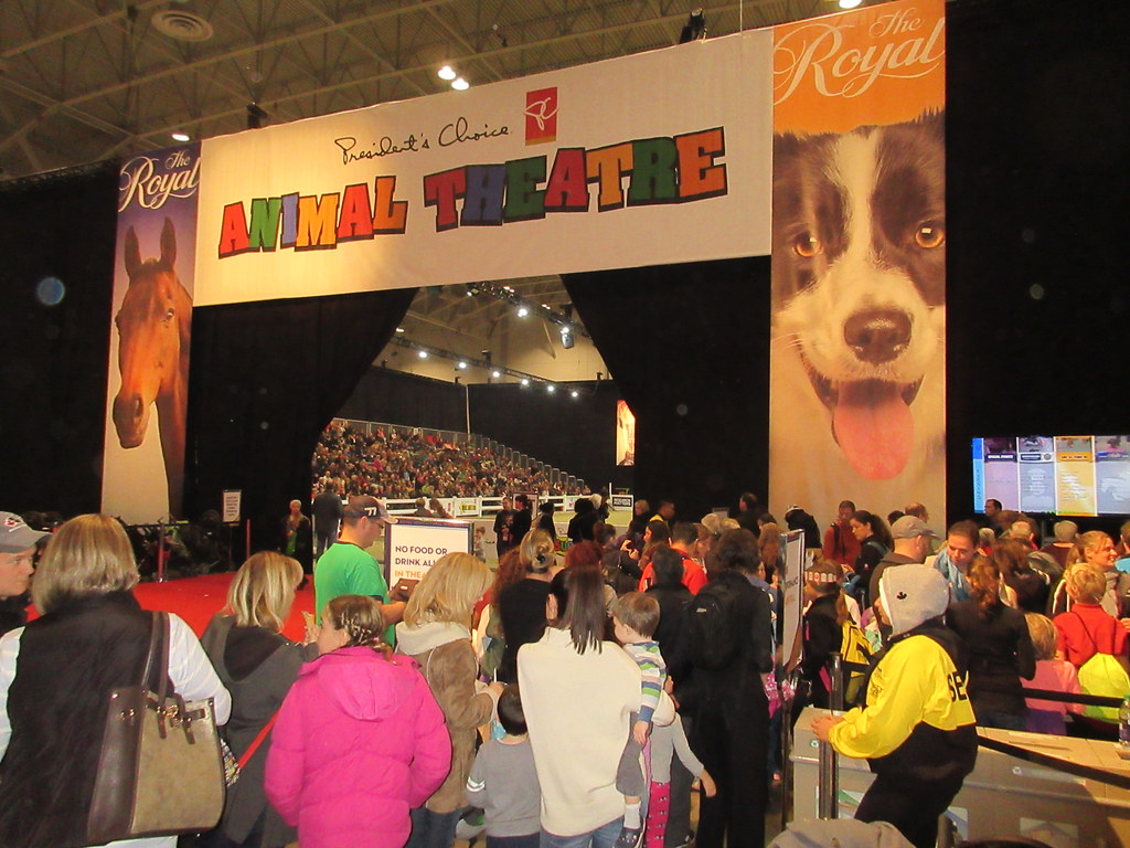 President's Choice Animal Theatre at Royal Winter Fair 2015