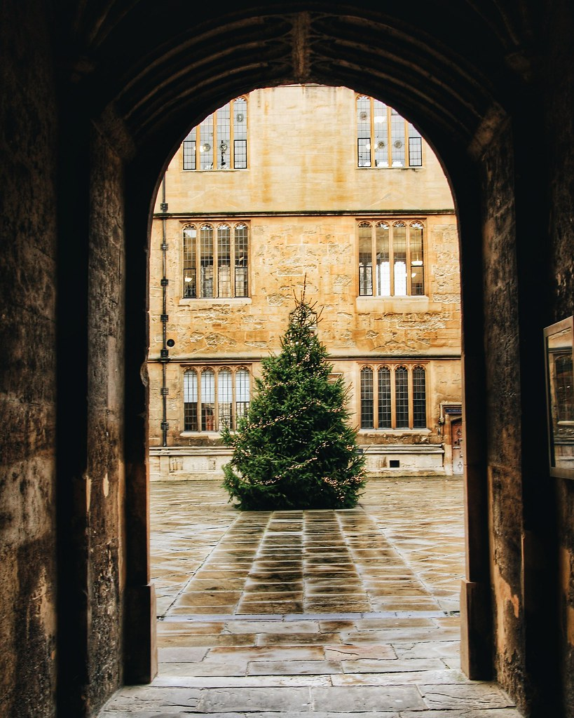 Christmas tree at Bodleian Library, University of Oxford