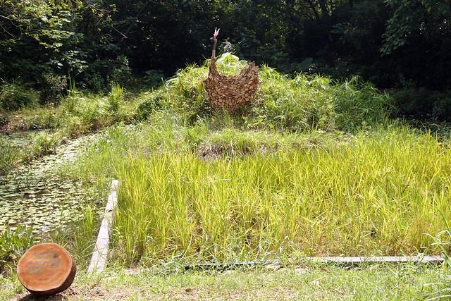 賴芳玉在鳥松濕地內自然農法水稻田創作「稻鴨」表現稻與鴨的共生共贏、讓濕地生態生生不息。攝影:李育琴。