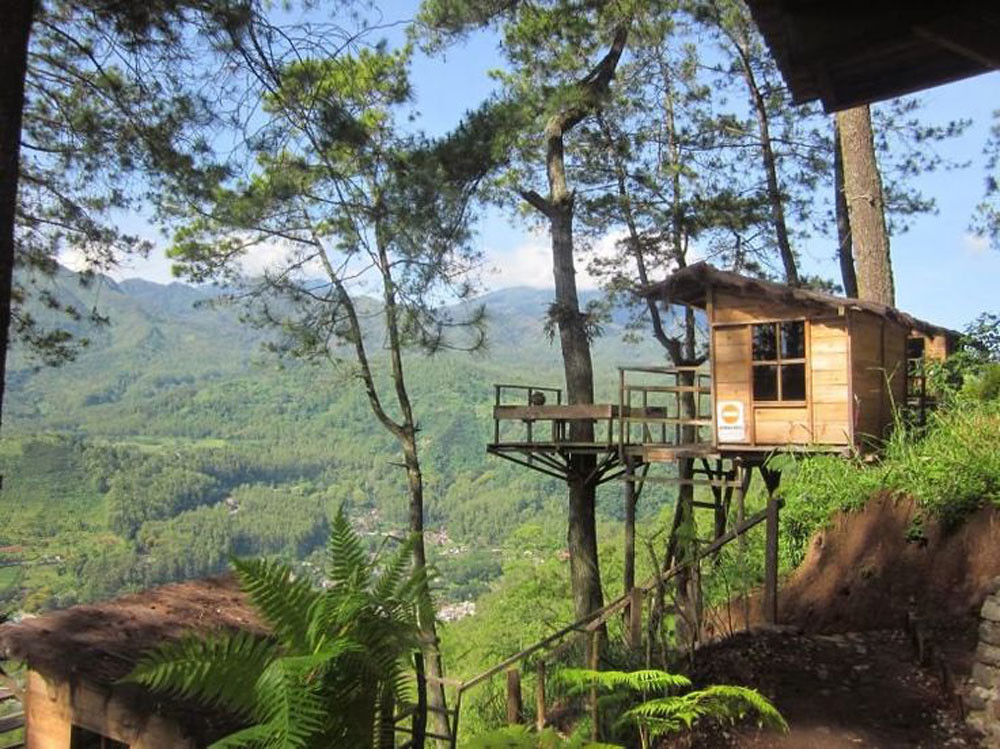 8 amazing treehouses in indonesia you can actually stay in