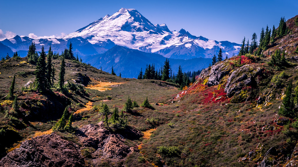 Mount baker autumn explored view of mount baker from for Chair 6 mt baker