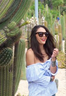 cactus-paradise