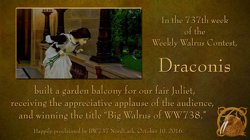 WW737 Certificate for Draconis