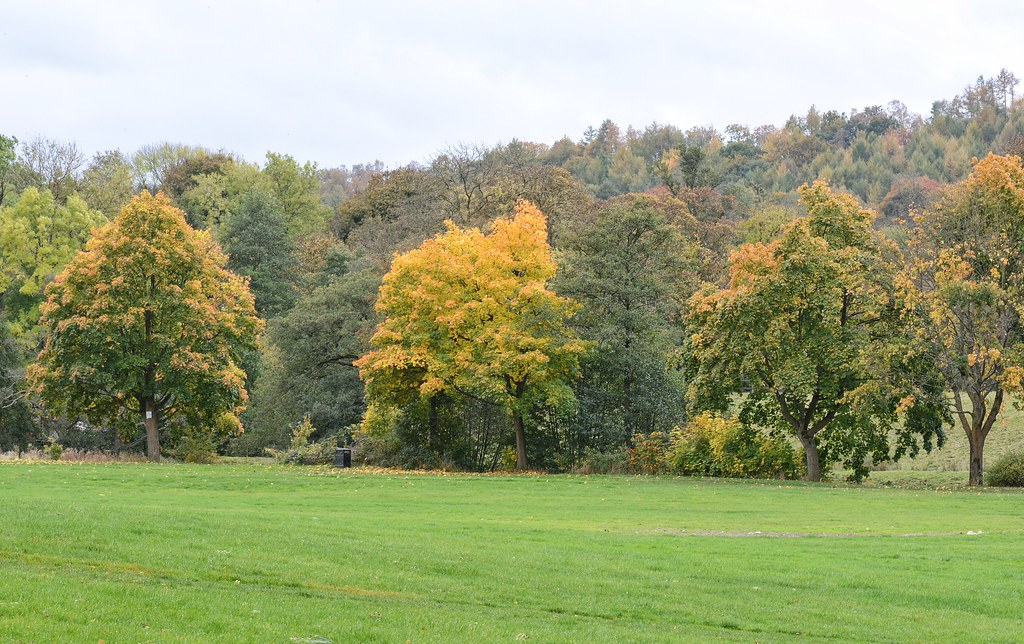 Autumn in Bingley and Baildon, Oct 16