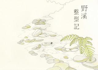 綠繪本《野溪整型記》。第三屆十大「節」出綠繪本徵件比賽第二名。