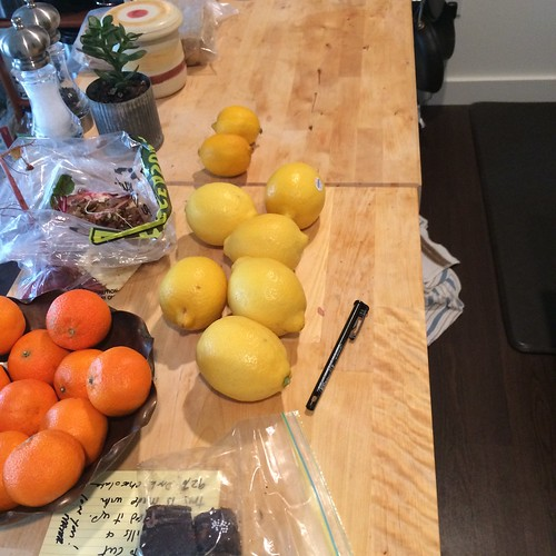 A messy kitchen counter containing a bowl full of clementines, eight lemons spread out, a baggie of chocolate, a note under the chocolate, salt and pepper grinders, a tiny suculent plant, and more.