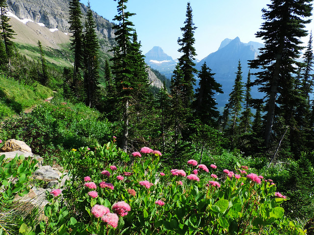 The Highline Trail, Glacier National Park, Montana