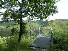 Aussicht vom Burgberg