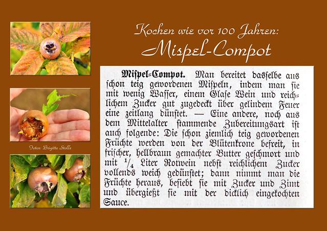 Kochen wir vor hundert Jahren Mispel Mispel Kompott Compot Rezept Naturkochen wilde Früchte Foto Brigitte Stolle