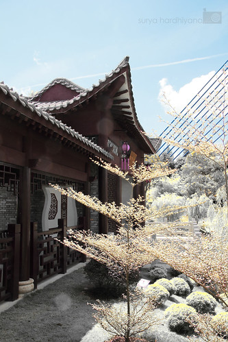 Sebuah Rumah ala Jepang di Putrajaya Dengan Filter Infrared