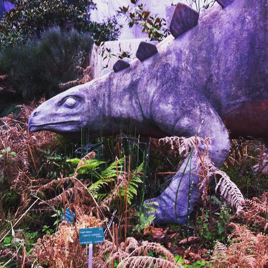 Jardin des plantes a l 39 entr e un st gosaure dans les foug - Jardin des plantes aix les bains ...