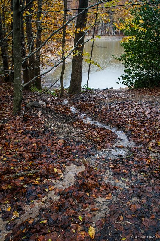 Agua bajando al pantano por el sendero