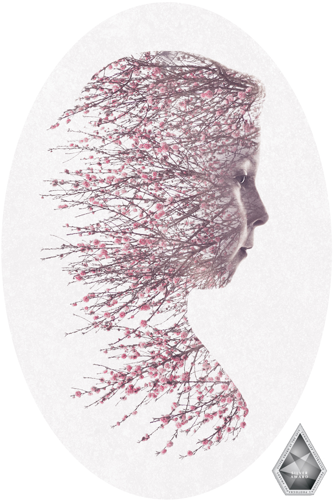 AIPP, Australian Institute of Professional Photography, APPA, Australian Professional Photography Awards, Canon, 2015, award, winning, Melbourne, Victoria, Australia, portrait, double-exposure, fine, art, blossom, spring, Jolie, Shanna Jones, photography, photo, picture, family, newborn, baby, child, photographer