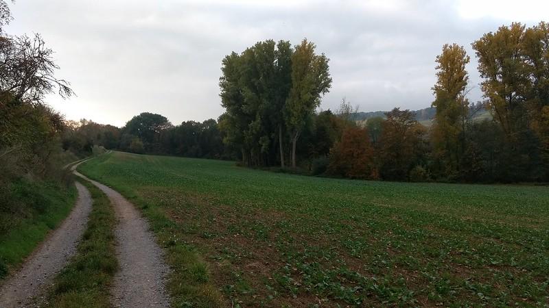 Selztal bei Ingelheim