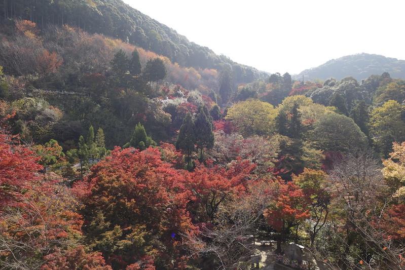 京都・清水寺・紅葉