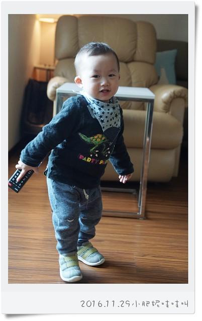 【小安比日記】每天都在巡田的1歲3個月….