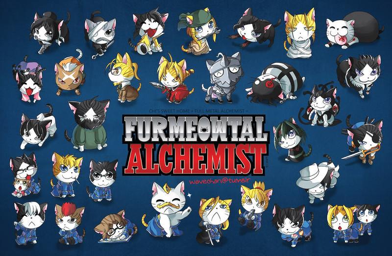 Cats vs Fullmetal Alchemist by suzuran